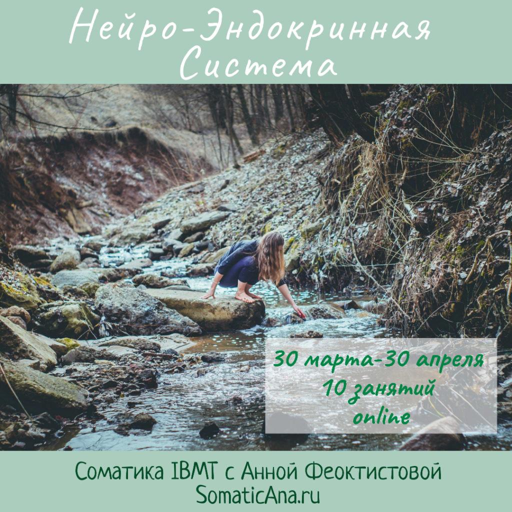 near-endokrinnaya-sistema-somaticana.ru